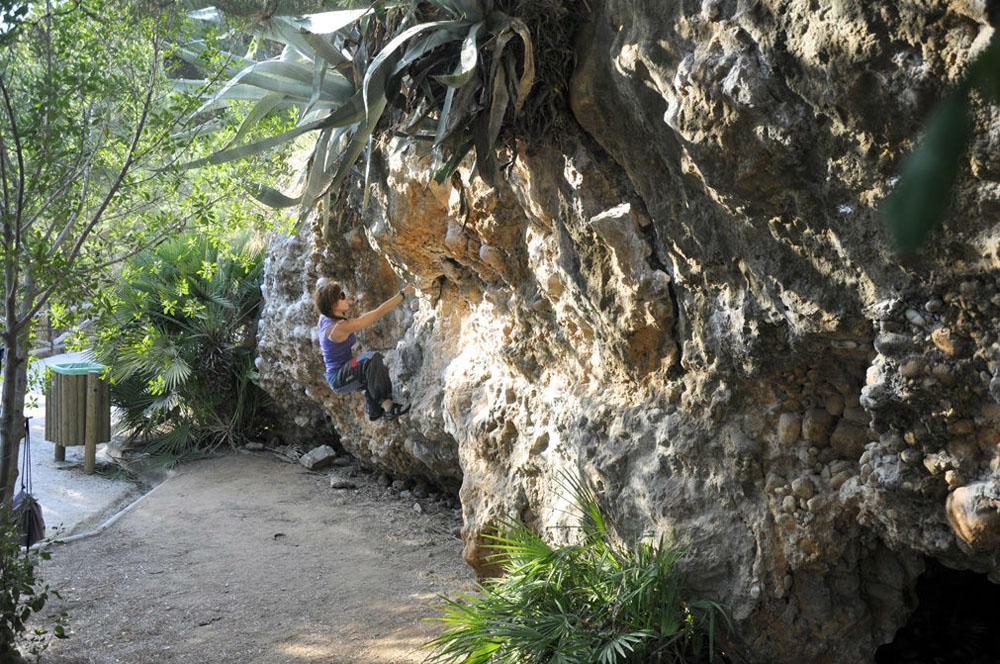 Contacto Club de Escalada Marbella