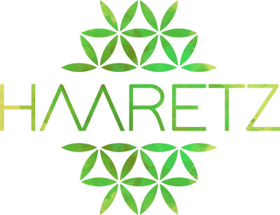 HAARETZ-LOGOTIPO-COLOR