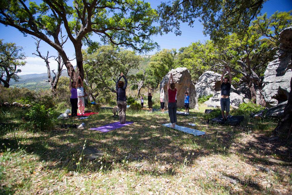 CEM-yoga-climb-4