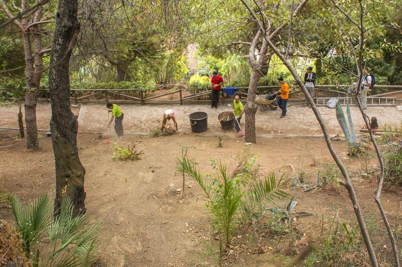 Actividad CEM – Limpieza Medio Ambiente – Pecho de las Cuevas (Polideportivo Paco Cantos, Marbella) – 10/10/2015