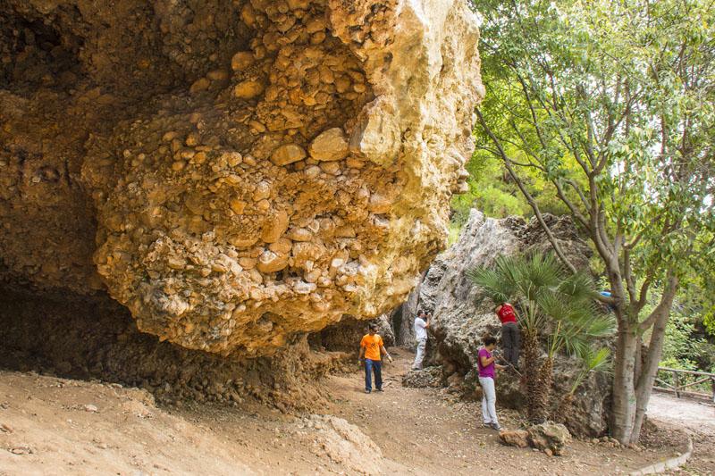 actividad-cem–limpieza-medio-ambiente-pecho-de-las-cuevas-polideportivo-paco-cantos-marbella-30