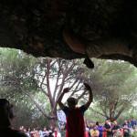 iii-encuentro-de-escalada-finales-marbella-2015-087