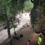 iii-encuentro-de-escalada-maraton-marbella-2015-470