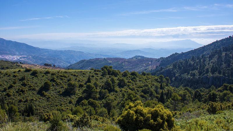 cem-pinsapo-trail-rallyes-escalada-madrid-2016-09