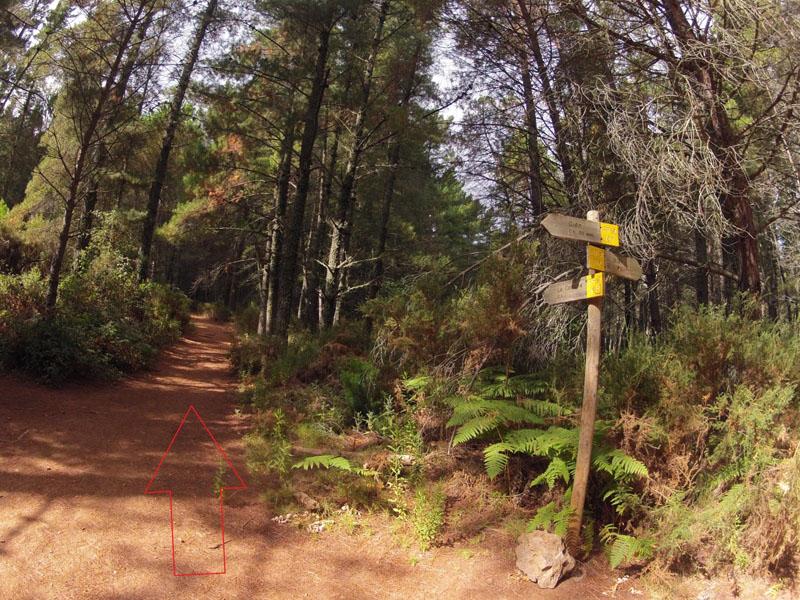 ruta-cem-refugio-juanar-concha-36