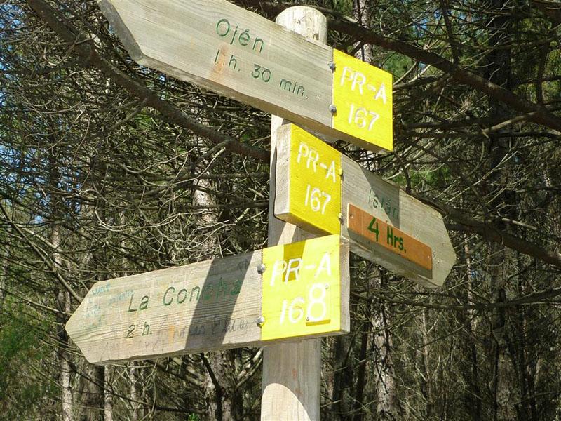 ruta-cem-refugio-juanar-concha-40