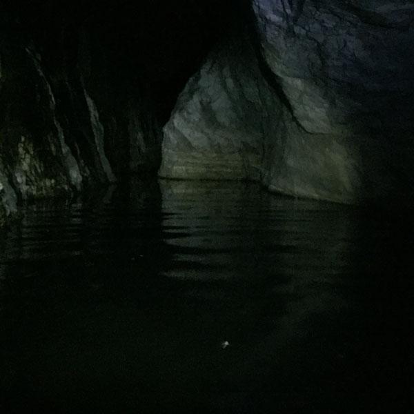 actividad-cem-barranco-nocturno-guadalmina-06