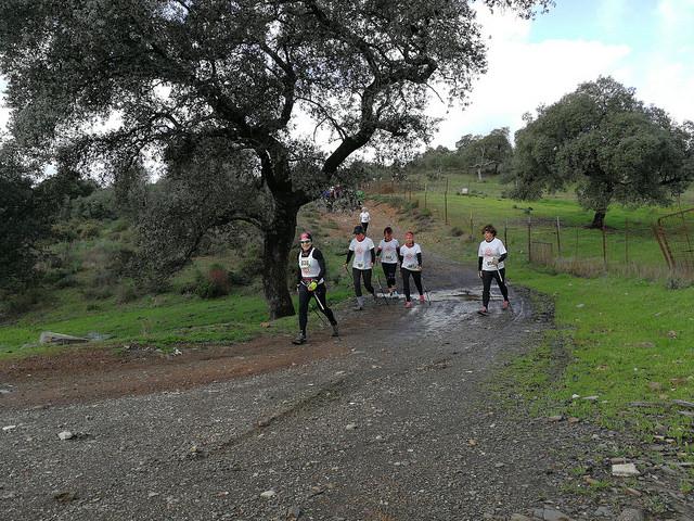 marcha-nordica-el-ronquillo-2018-07