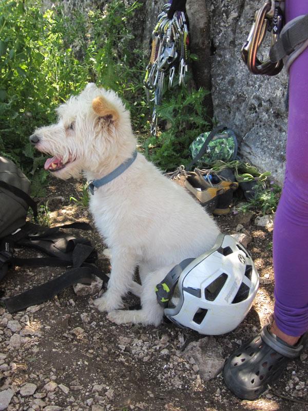 club-escalada-marbella-actividad-grazalema-2014-17