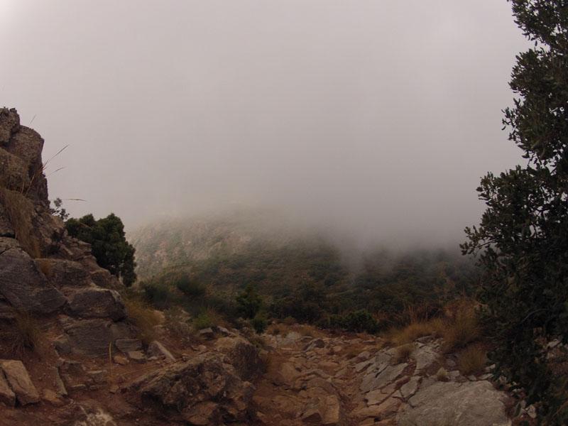 cem-ruta-senderismo-2-marbella-sierra-blanca-03-28