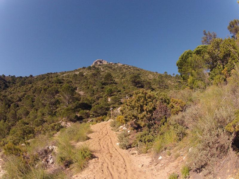 cem-ruta-senderismo-2-marbella-sierra-blanca-04