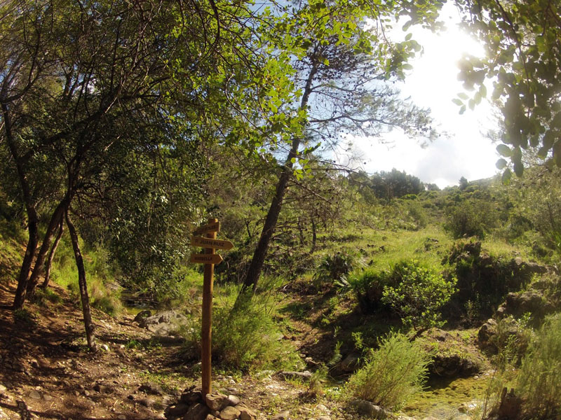cem-ruta-senderismo-2-marbella-sierra-blanca-23