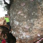 iii-encuentro-de-escalada-finales-marbella-2015-109