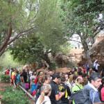 iii-encuentro-de-escalada-finales-marbella-2015-135