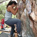 iii-encuentro-de-escalada-finales-marbella-2015-228