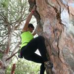 iii-encuentro-de-escalada-finales-marbella-2015-242