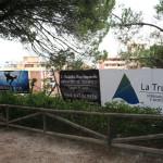 iii-encuentro-de-escalada-maraton-marbella-2015-210