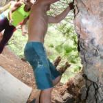 iii-encuentro-de-escalada-maraton-marbella-2015-339