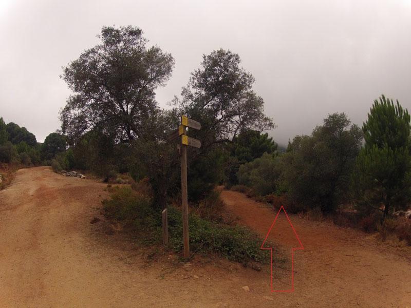 ruta-cem-refugio-juanar-concha-13
