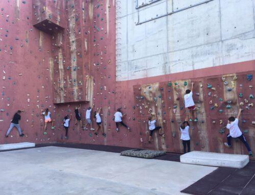 El Club Escalada Marbella completa el cupo de inscripciones y abre lista de espera en la Escuela de Escalada Infantil a un solo mes de su apertura.