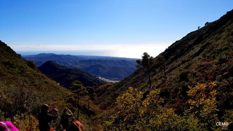 actividad-cem-ruta-senderismo-ojen-el-cerezal-sierra-blanca-2018-07
