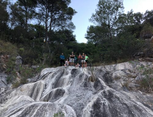 Crónica y Fotos – Crónica de la excursión por el arroyo de La laja
